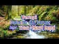 Masteran Burung Dengan Terapi Gemericik Air Dan Suara Burung Seperti Di Hutan Ngobra(.mp3 .mp4) Mp3 - Mp4 Download