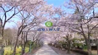 2018年に撮影した、高知工科大学と鏡野公園の桜です。桜の名所100選...