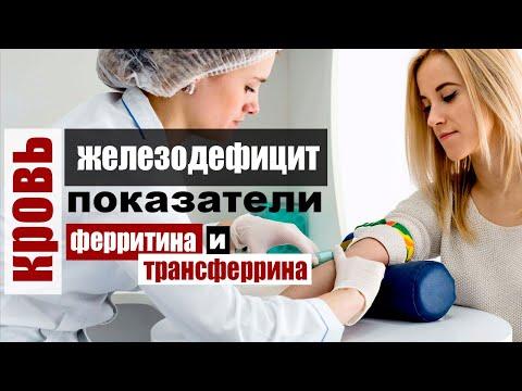 Ферритин и Трансферрин - железодефицит и показатели биохимии крови