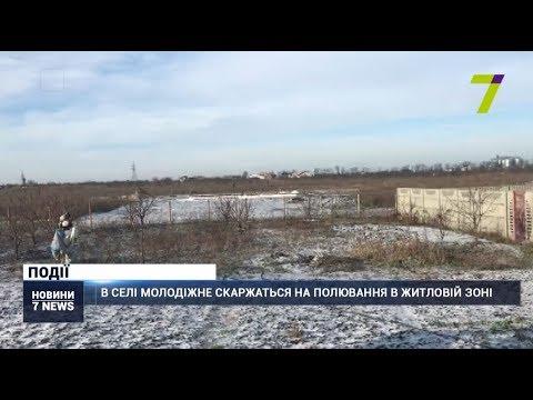 Новости 7 канал Одесса: В селі Молодіжне скаржаться на полювання в житловій зоні