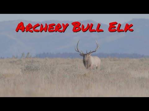 Bowhunting For MASSIVE ELK in UTAH With SITKA!