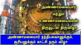 அண்ணாமலையார் நந்திபகவானுக்கும், சூரியனுக்கும் காட்சி தரும் விழா | Thiruvannamalai | Britain Tamil