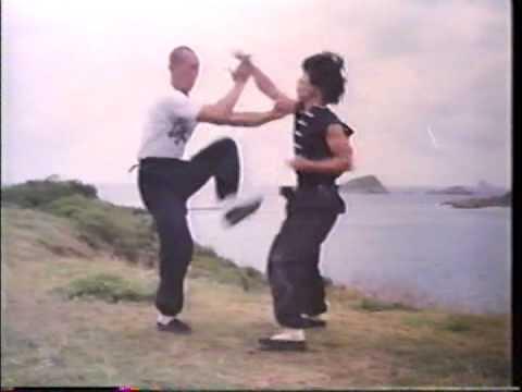 Wing Chun and Grandmaster IP Man