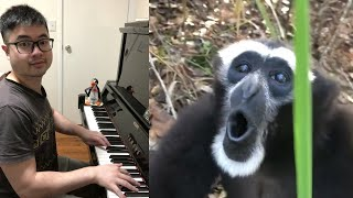 This Monkey can REALLY SING!
