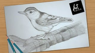 How to Draw and Shade Bird | Drawing Tutorial
