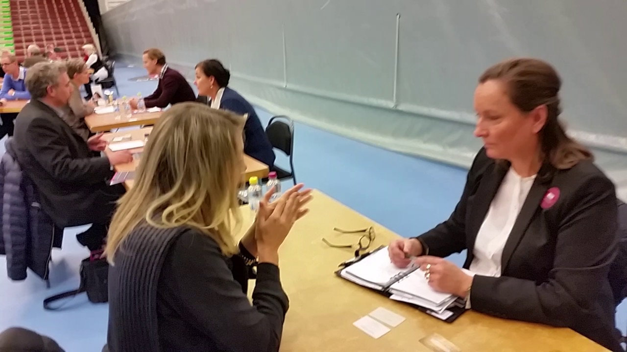 Speed Dating affärs modell