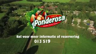 Recreatiepark Camping Ponderosa Ulicoten  Nederland