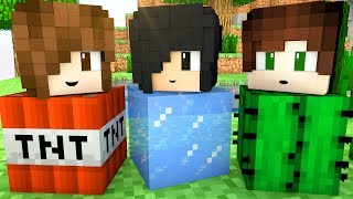 Minecraft - ATRAPALHADOS NO ESCONDE-ESCONDE (Hide and Seek)