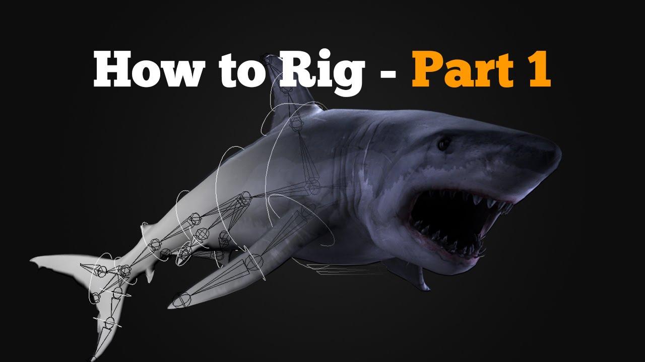 how to buy a shark