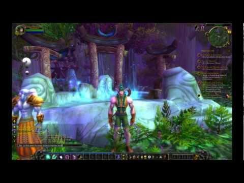 World of Warcraft level 1 to level 80:part 6