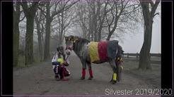 Silvester 19/20 |Sperrgebiet 🚧|Pony-Park Padenstedt