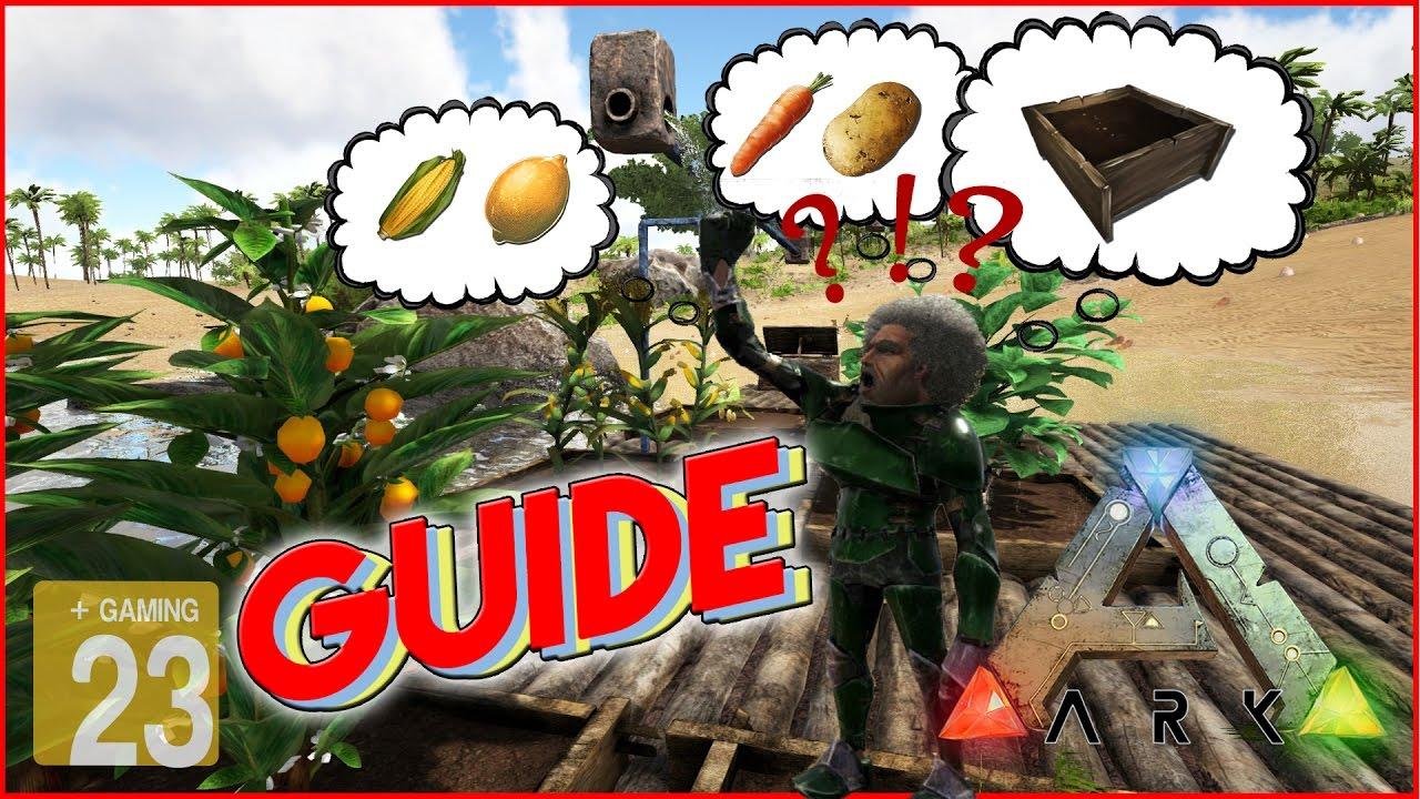 ark : survival evolved *guide* garten/feld - gemüse - richtig, Gartengerate ideen