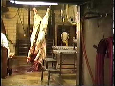 Slaughter (1988) by Vincent O'Brien Feature Length Documentary Film slaughterhouse