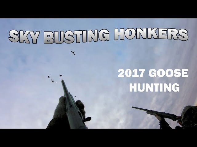 Running the Train 2017 Goose Hunting