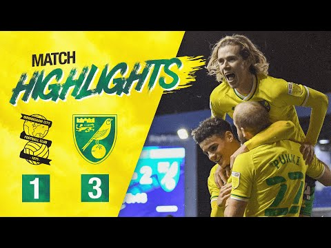 Birmingham Norwich Goals And Highlights