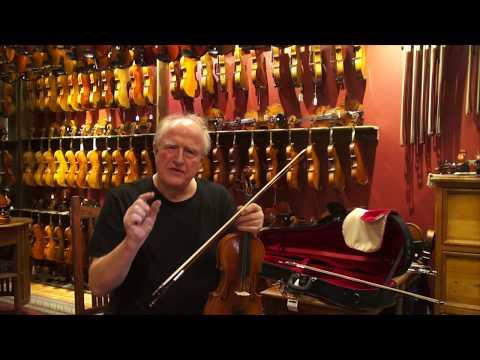 Eastman Violin Model VL 80 - Review by Animato Strings