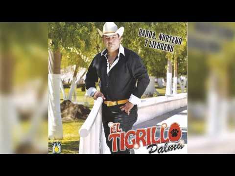 El Tigrillo Palma - Agustin Jaime