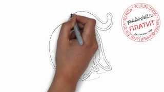 Нарисованные карандашом кошки  Как нарисовать отжимающуюся кошку за 22 секунды поэтапно карандашом