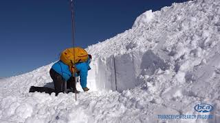 Avalanche Rescue Series: Avalanche Probing 101