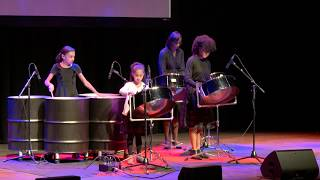 What I Learned from Playing Steelpan | Leigh Solomon Pugliano | TEDxPittsburghWomen