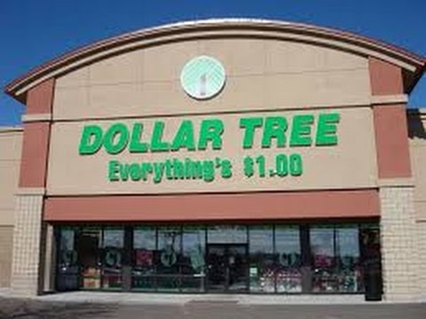 Dollar Tree Vlog #1: Solar Dancing Flowers And More