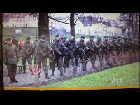 European Army IQ