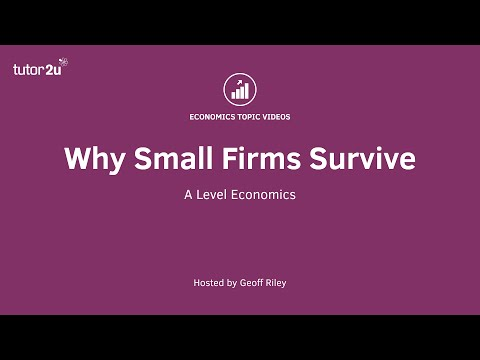 Survival of Small Firms in Oligopoly