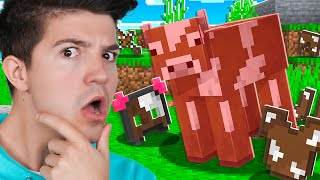 Minecraft But Mobs Drop Their Armor!