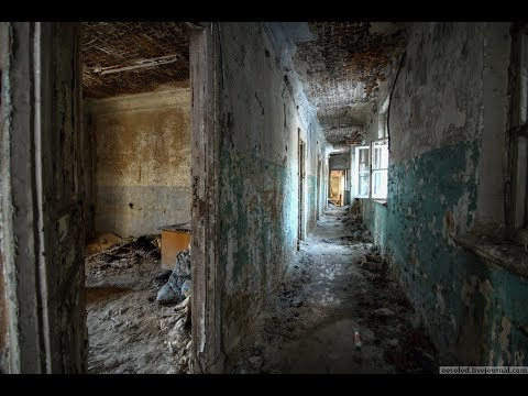 Заброшенные теплицы и общежития ВИР \ Пушкин (Ленинградская область) \ Vlog путешествий #176