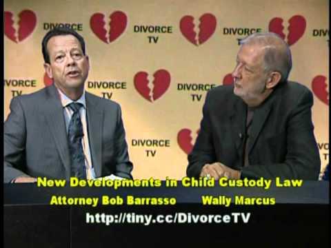 New Developments in Child Custody Law