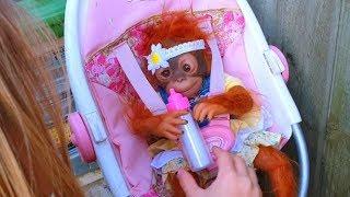 Эльвира и братик Игры в куклы  беби бон обезьянка Новая кукла
