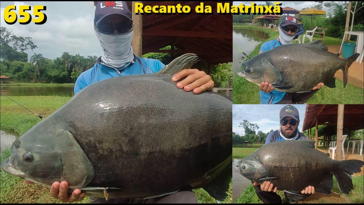 Muita Chuva e Tambas em pleno sabadão no Recanto da Matrinxã - Programa Fishingtur na TV 655