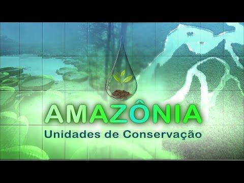 TCU EM AÇÃO 67 - ESPECIAL AMAZÔNIA