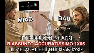 "RECENSIONE GAME OF THRONES 1x05 RIASSUNTO ACCURATISSIMO ""IL METACANE E IL FELINOGROSSOH"