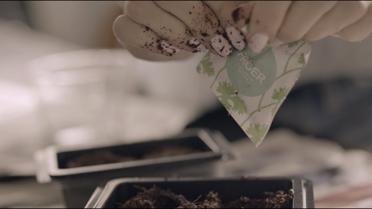 IKEA Presents: Plant A Seed   YouTube