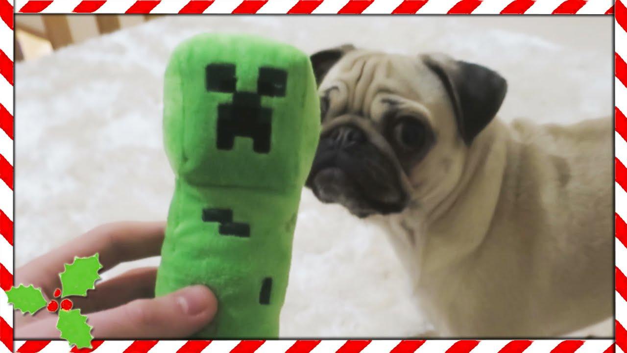 PUGS VS CREEPER!! | Vlogmas