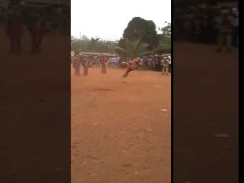 Ubiaja/Africa acrobatic display