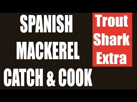 Speckled Trout, Shark and Spanish Mackerel Catch, Clean and Cook