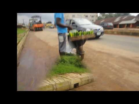 Random Walk(Second East Circular Road, Benin City, Nigeria)Part9