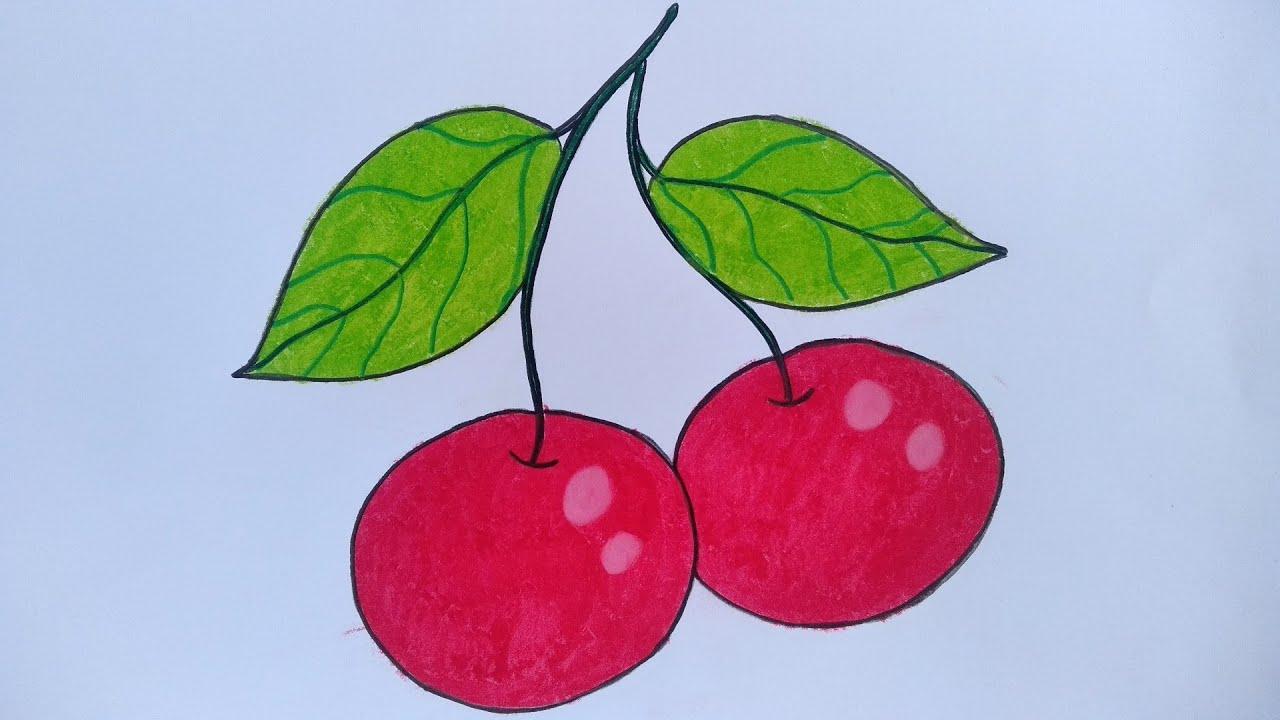 Menggambar Buah Cherry Cara Menggambar Buah Cherry Yang Mudah