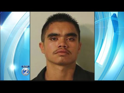 Hawaii island man accused of stealing second county bus in a month