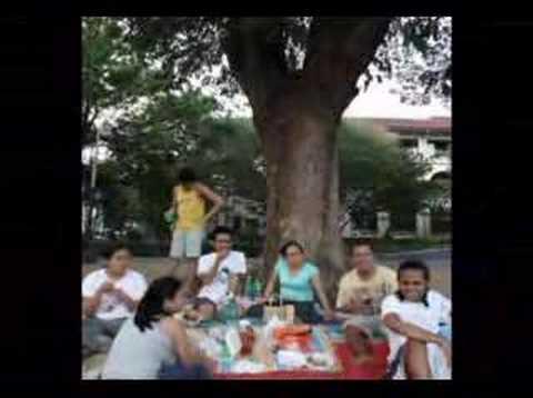 Under the Acacia Tree
