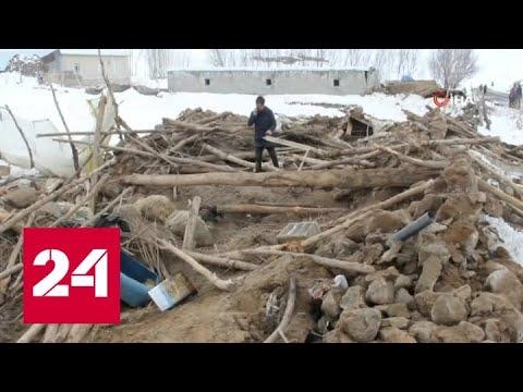 Землетрясение на границе Ирана и Турции: среди погибших есть дети - Россия 24