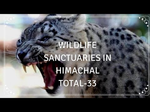 Wildlife Sanctuary National Parks