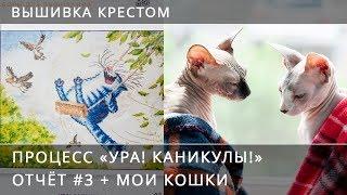 """Вышивка крестом. Процесс """"Ура! Каникулы!"""" Отчёт #3 + Мои кошки"""