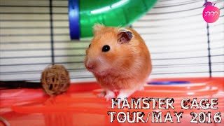 Hamster Cage Tour / May 2016(Today's video is a tour of Cashew's cage. Hope you enjoy :) x MY LINKS: Facebook page: https://www.facebook.com/peachy.petparadise Twitter ..., 2016-05-14T02:57:41.000Z)