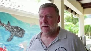 Коралловые фермы возрождают рифы