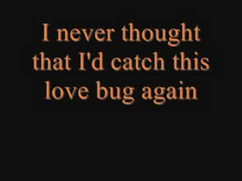 Jonas Brothers: Love Bug with Lyrics & Pictures.