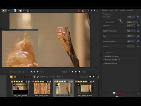Gimp 'Pro' Tutorial: Introduction to Raw Therapee