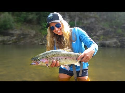 Summertime Fly Fishing For GIANT Trout